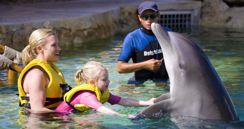 Dolphin Swim & Ride no Dolphinaris Park
