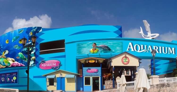 Informações sobre o Interactive Aquarium Cancún