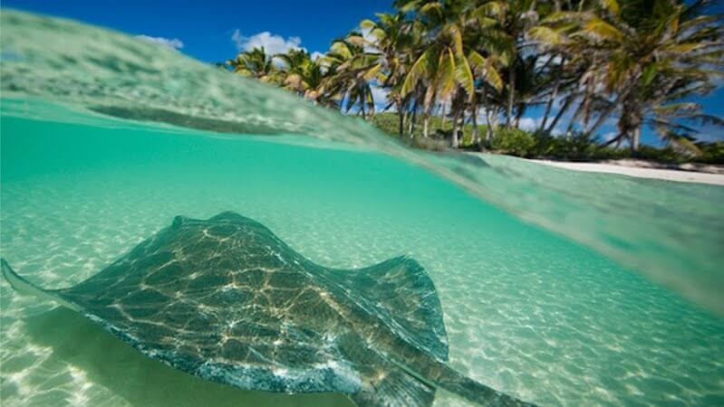 Isla Contoy em Cancún