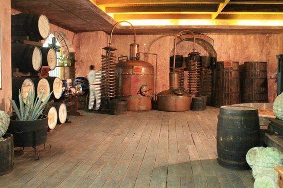 Informações sobre o Museu Sensorial da Tequila em Cancún