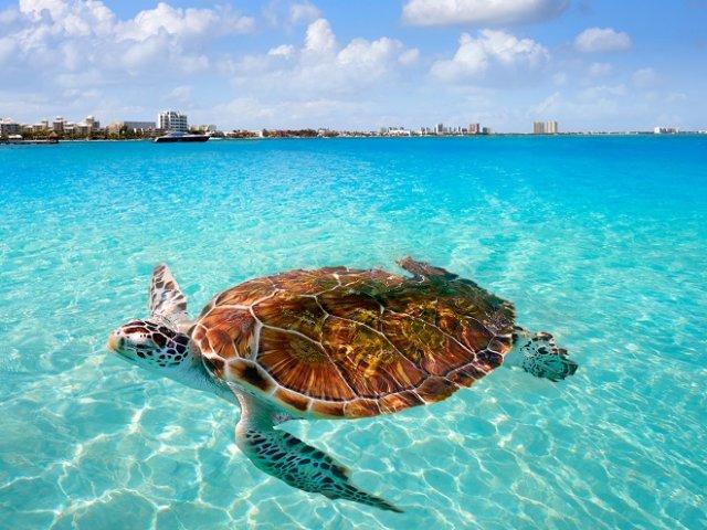 Cancún em setembro