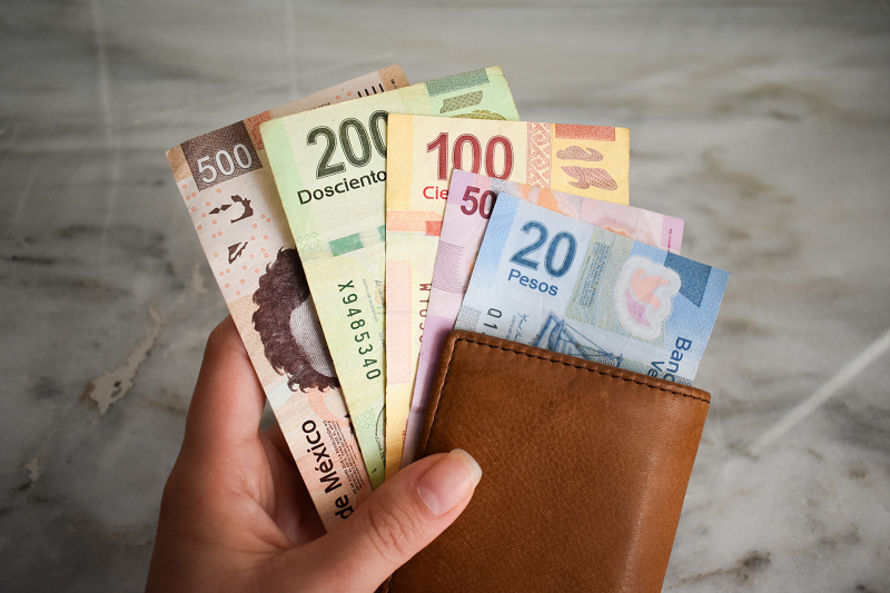 Carteira com pesos mexicanos