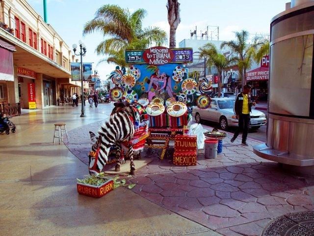 Roteiro de 5 dias em Tijuana